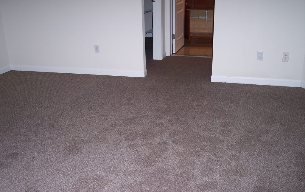 Towers Restoration and Cleaning in Kennedale, Texas, 76017